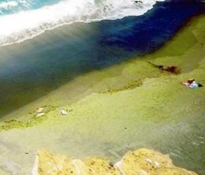 шарен плаж