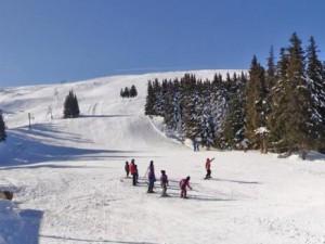 Ски писта Алеко