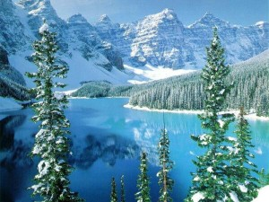 ски в България