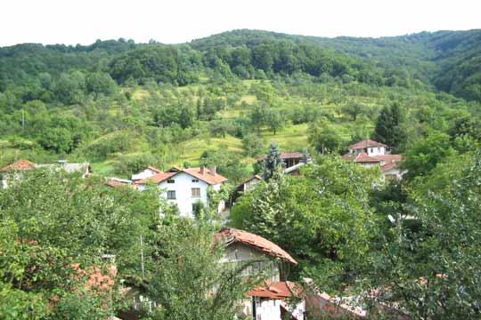 село чифлик